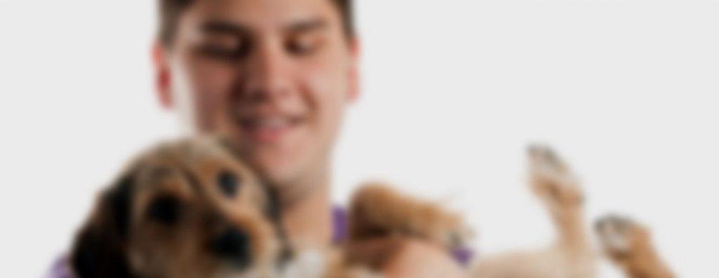 dog owner and dog slider